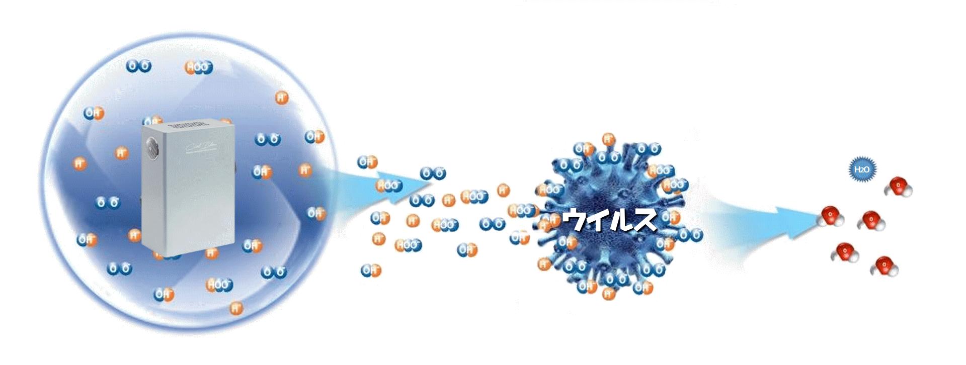 ウイルスが不活化される原理
